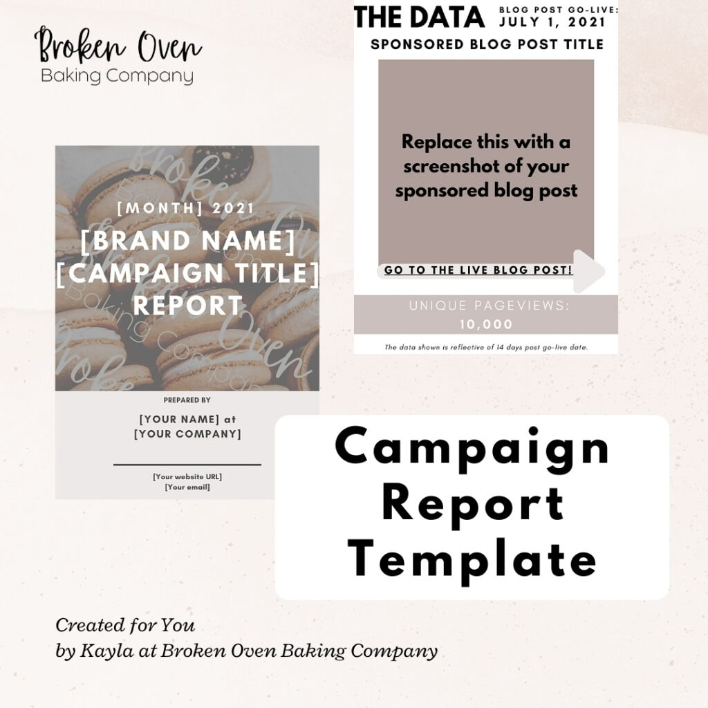 Campaign Report Template teaser