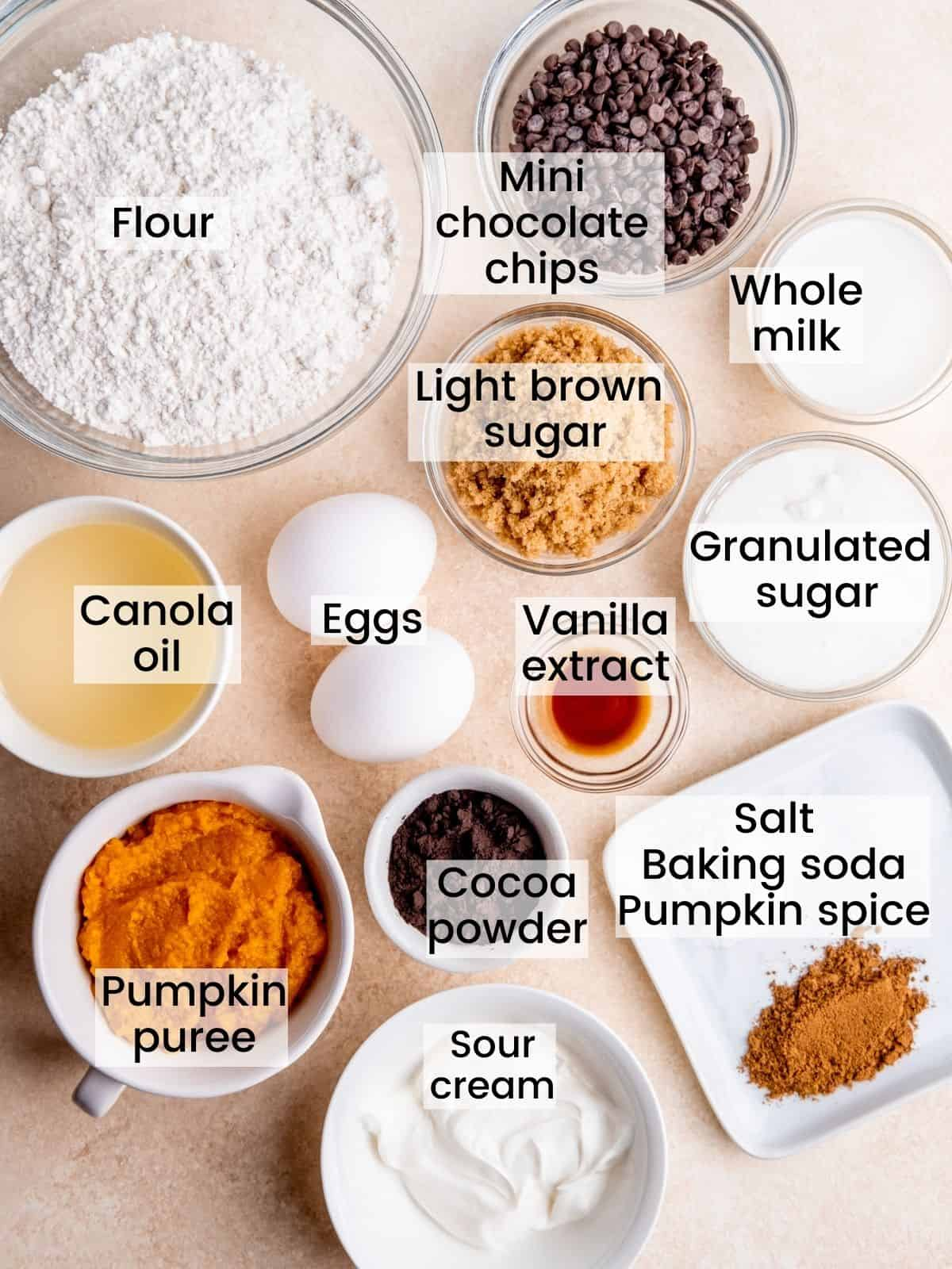 chocolate pumpkin muffin ingredients laid out and labeled